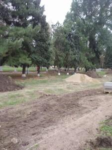 Парк, расположенный по ул. Ленина, 81 А ст. Новоплатнировской, Ленинградского района, Краснодарского края 2